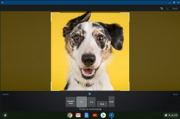 share videos from your chromebook